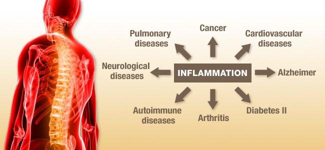 inflammation-650x300